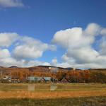 蓼科花ファクトリー - 窓からは八ヶ岳が一望