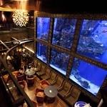 ラグシス - ウミガメが泳ぐ水槽は圧巻