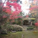 たわらや - 妙心寺・大宝院の庭園