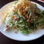16260170 - 新鮮野菜のミックスサラダ