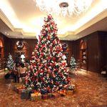 スプレンディード - 大阪で、ここのクリスマスツリーが一番きれいかも??  お気に入り。