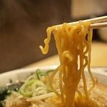 二代目つじ田 味噌の章 - 味噌らーめん(麺)