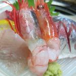 瑞幸 - 前浜定置網獲り浜魚の刺身