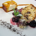 オステリア チロ - リコッタチーズとレーズンチョコレートのピパセネールと濃厚パンナコッタ
