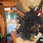 ラグーン - サーフボードや足ひれで作ったクリスマスツリー