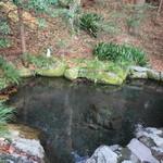 16371583 - 明神池水源