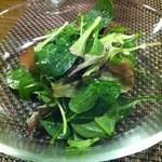 16415375 - 野菜畑のグリーンサラダ