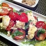 16415579 - トマトとモッツァレラチーズのサラダ