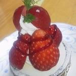パピヨン - 苺のケーキ