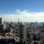 サイーファ ケバブ アンド ビリヤニ - ミッドタウン・タワーから東京タワーを望む