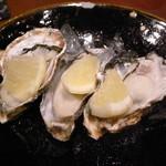 16560959 - 生牡蠣(厚岸)