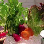 ヨシズハイ - 水耕野菜のバーニャカウダ