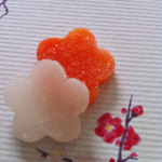 奈加川 - 人参と大根で紅白♪加賀野菜の蜜菓子は五郎島金時、打木赤皮甘栗かぼちゃ、金沢春菊、源助大根、筍などがあるそうです。