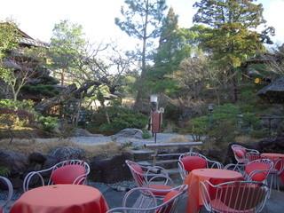 イノダコーヒ 清水支店 - 窓際席から庭を観てみると・・