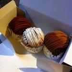 16703642 - デミサイズ(プレーン、チョコ、紅茶)2012.12