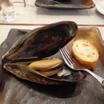 ビストロ ダイア - 北海道「増毛(ましゅけ)」の巨大ムール貝の白ワイン蒸し