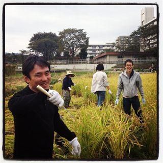 立川野菜、自家栽培無農薬無化学肥料の野菜を使用!