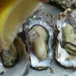 かき焼 うちの海 - カキにレモン
