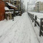 エムコイデ - 何年かぶりの大雪の日(1/14・成人の日)