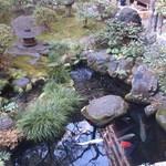 料理旅館・天ぷら吉川 - 庭には濃いが沢山 鷺がつまみに来るとか・・