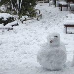 16836894 - 誰かが作った雪だるま