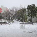 16836896 - 多摩川の花火の際は礼儀正しく消される高島屋の大きなロゴ