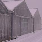 和田観光苺組合 - まるで雪国ですね