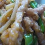16871256 - 青椒肉絲