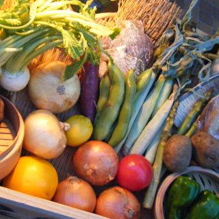 北海道佐々木ファームさん直送の健康野菜