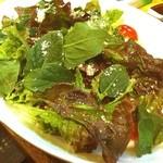 鳥雅 - 野菜を食べないと、美味しいものを食べ続けられませんwww 宿命かっ!