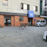 いさみ寿司 - 店の前を鹿が。