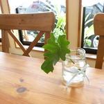 カフェ セレステ - 優しい天然の光に包まれたお昼の店内・・・