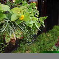 PUB CARDINAL - 銀座で40年。表の植物もご覧ください。