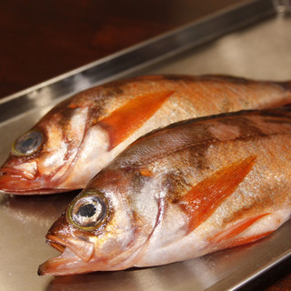 魚介類は要予約。新鮮な食材しか使いません。