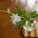 館ヶ森アーク牧場 レストランTill's - テーブルの花