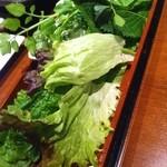 17100233 - おかわり自由の新鮮な野菜…