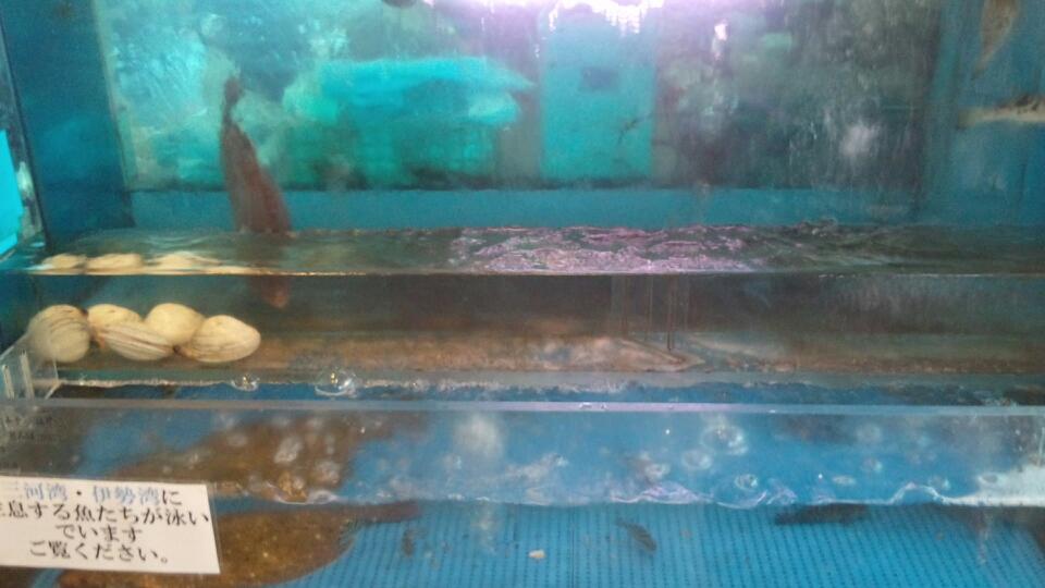 魚魚丸  常滑店