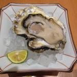 17135132 - 生牡蠣 豊後水道の天然牡蠣 (1個650円)