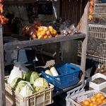 柿の木坂の家 - お餅カフェ 柿の木坂の家 野菜販売