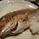 佐渡蔵 - 大きな鯛が一匹!