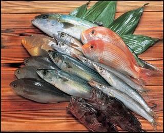 GORI 西麻布 - 九州地魚