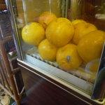 喫茶 ナポレオン - 店内にあるグレープフルーツ専用冷蔵庫
