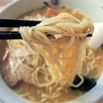 17282343 - 中細ウエーブ麺