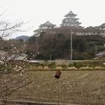 湯浅城 - 梅と湯浅城