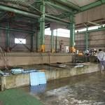 新島水産 - 大きなコンクリートの生簀