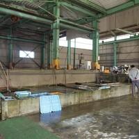 新島水産-大きなコンクリートの生簀