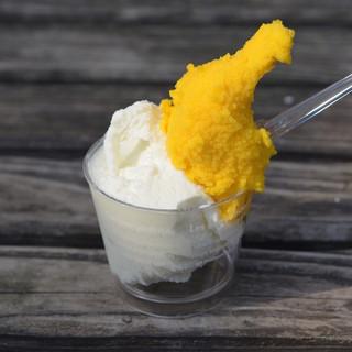 オレンジジェラート - 料理写真:小浜の塩ミルク、マンゴージェラート