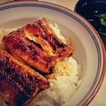 17358049 - お昼の鰻丼 1,000円