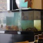 恵比寿屋食堂 -