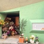 ライノスキッチン - オープンしたてで花いっぱい☆